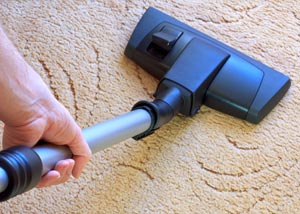 A carpet cleaning professional working in Wilton