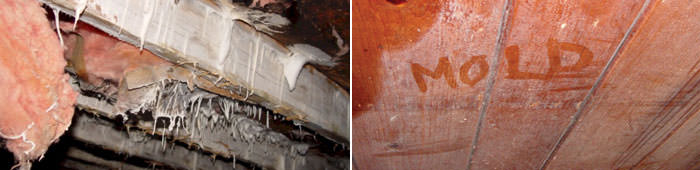 Home Mold in CT, including Danbury, Norwalk & Shelton.